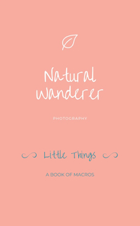 Little Things book cover