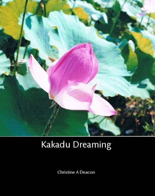 Kakadu Dreaming